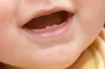 Les deux premières dents...