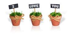 Un cadeau qui change des traditionnelles dragées...des semis !