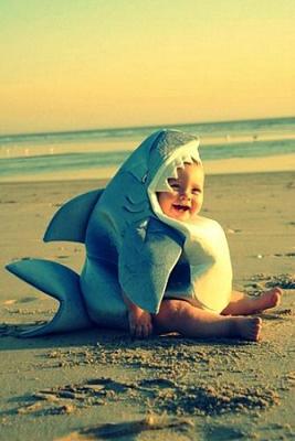 Halloween Requin